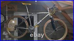 19 Titanium GT stunning rare retro mountain bike FRAMESET ONLY OPTION Ltd Offer