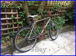 Marin Eldridge Grade 1994 Mountain Bike / 17.5 Frame / Vintage / Rare Forks