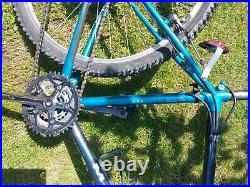 Raleigh Titanium M-Trax Ti 2000 retro 90's Mountain Bike mtb